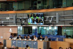 Umweltausschuss Hearing