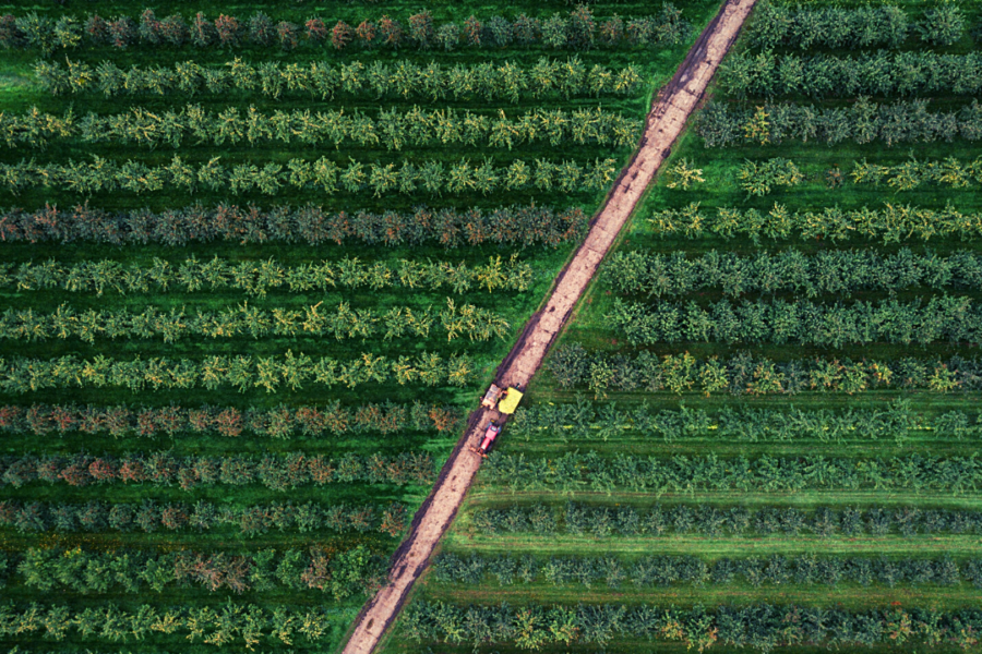 EU Agrarreform rote Linien