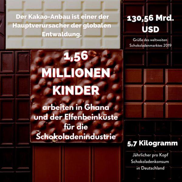 Fakten zu Schokolade