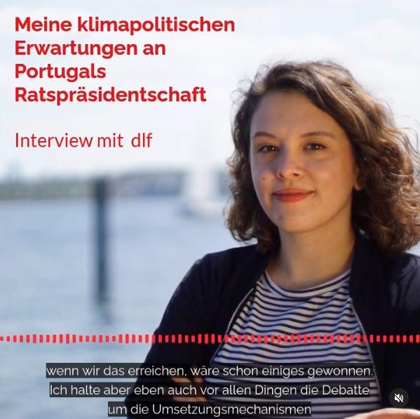 dlf Interview